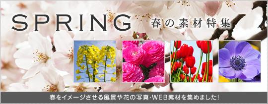 春の素材特集