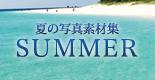 夏の素材特集