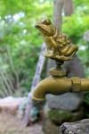金のカエルの蛇口