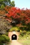 紅葉とレンガのトンネル