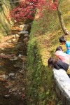 小川で遊ぶ子供たち