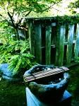 庭に置かれた手水鉢