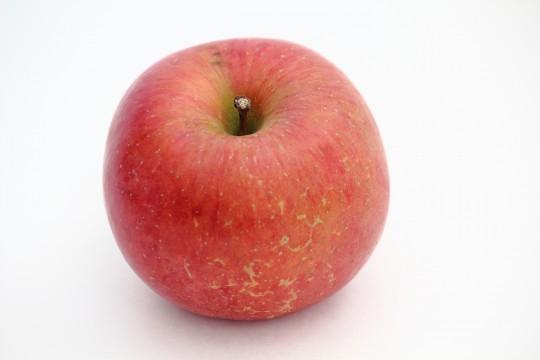 赤いりんご1