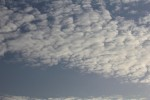 1313_sheep_cloud2