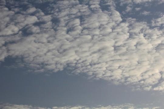 ひつじ雲2