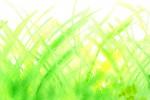 緑の水彩のテクスチャ2