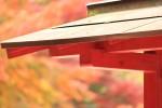 秋の景色001y