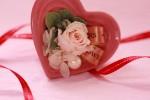 heart140205_4