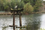 torii_131014
