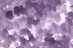 古代紫の水彩のテクスチャ