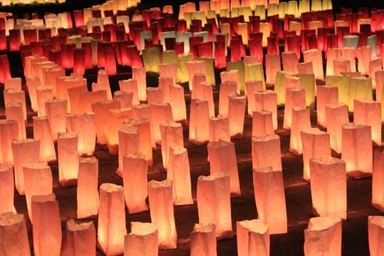 たくさん並んだ灯明