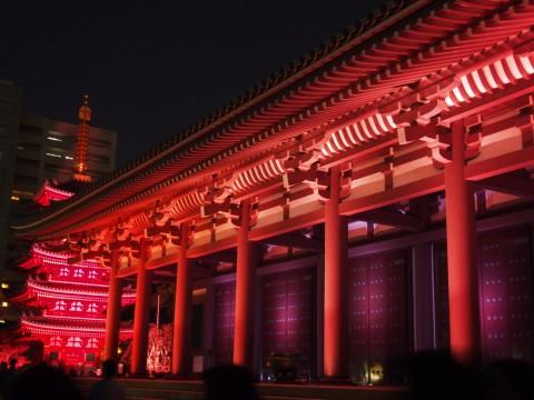 ライトアップされたお寺と五重塔