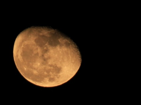 オレンジ色っぽい月