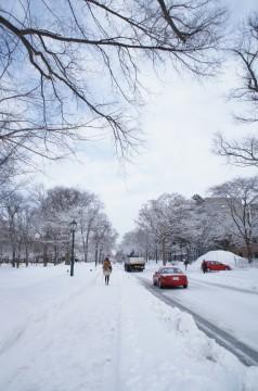 雪国の歩道