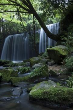 緑の中の清流と滝
