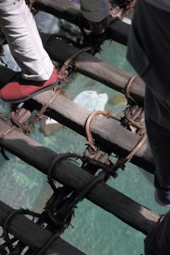 橋の隙間から覗く川