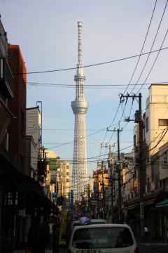浅草の街並みからみえる東京スカイツリー