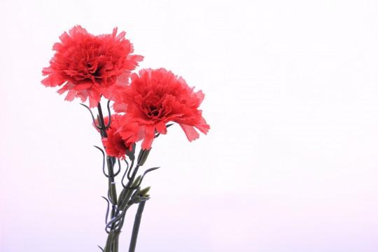 カーネーションの造花