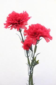 カーネーションの造花2