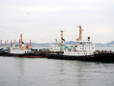 冬の港の船