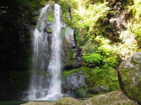 山奥に現れた小さな滝