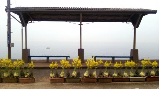 曇り空の下灘駅