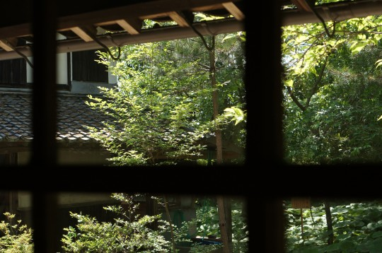 日本家屋の中から見た庭