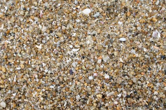 砂浜のアップ