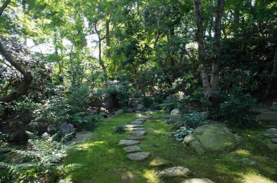 苔むした和風庭園