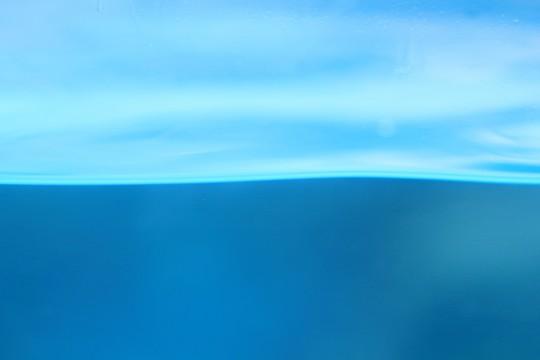 水槽の水面