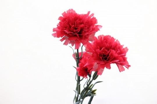 カーネーションの造花5