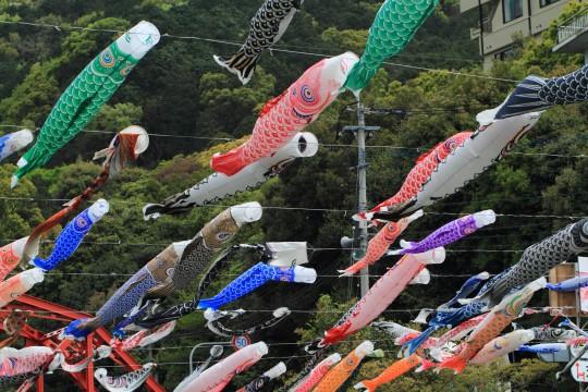 たくさんの鯉のぼり2
