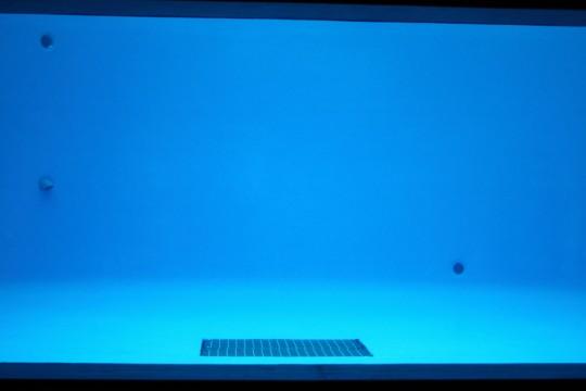 空っぽの水槽