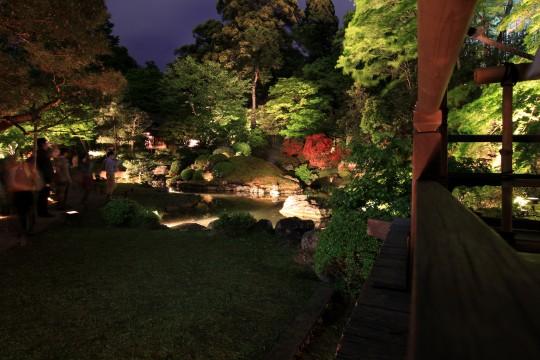 青蓮院門跡夜間特別拝観