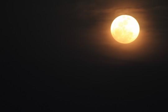 黄金に輝く月