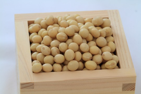 升に入った豆