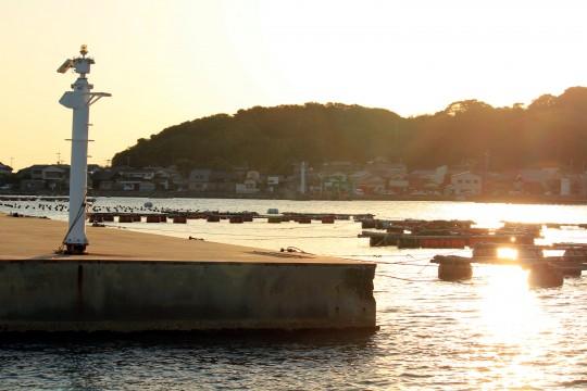 夕方の漁港1