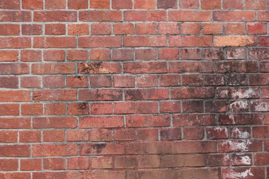赤煉瓦の壁