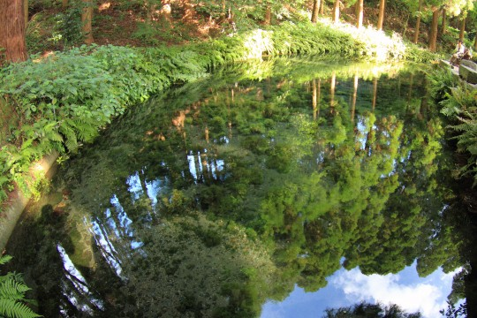 青空と木が映り込んだきれいな水