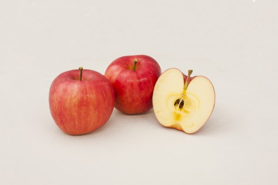 りんごの断面