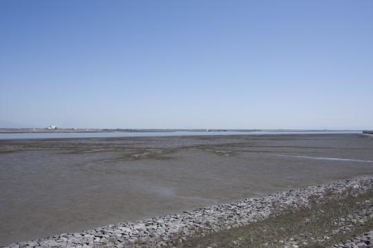 有明海の干潟2
