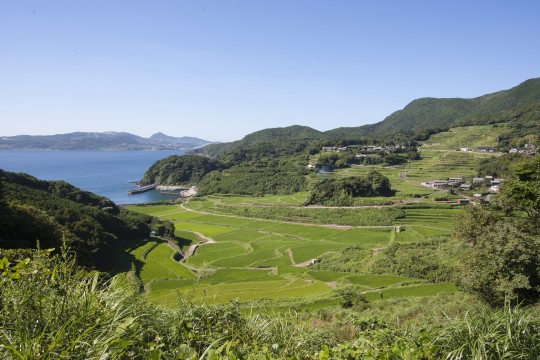 平戸の棚田と海