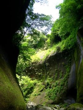 緑色の渓谷