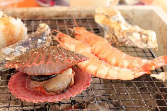 牡蠣小屋のヒオウギガイ