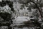 冬の浄住寺
