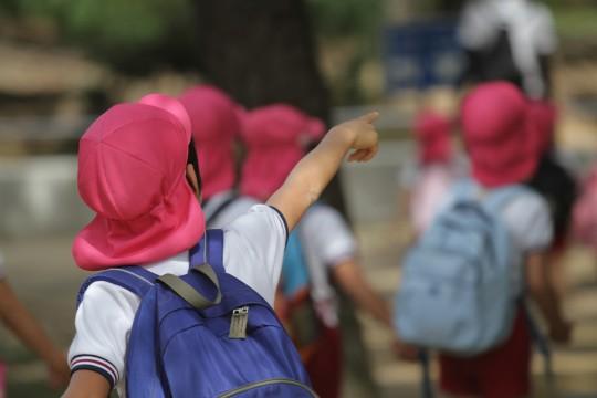 「幼稚園入園時から受け取るタイプ」人気学資保険の比較