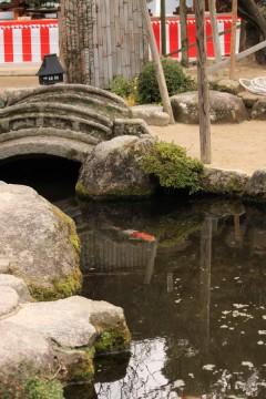 太宰府天満宮の池y