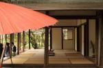 野点傘と茶室