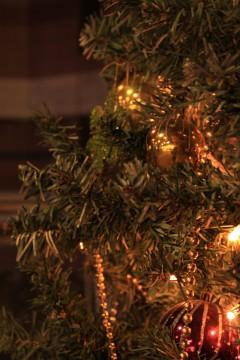 クリスマスツリー001y