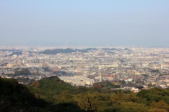 高所から見下ろした街並み
